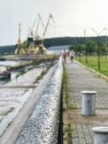 Дунавски парк