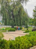 Дунавски парк през лятото