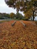 Дунавски парк през есента