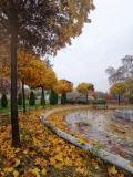 Дунавски парк по време на дъжд